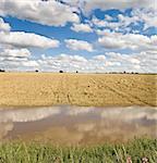 floods river avon stratford-upon-avon warwickshire england uk