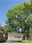 upper slaughter village the cotswolds gloucestershire the midlands england uk