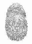 vector illustration of a fingerprint