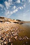 jurassic coast charmouth dorset