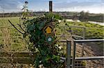 the river avon bidford on avon warwickshire the midlands england uk