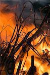 Burning wood in big bonfire place