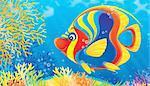 children's book illustration for your design