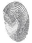 Digital finger print - web signature.