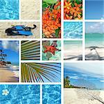 Tropical collage. Exotic travel. Caribbean sea Dominican Republic