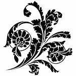 Swirls and flowers. Elegance vector illustration in black.