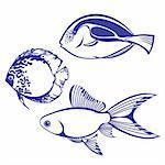 Tropical Fish. Set #4. Vector illustration on white background for design