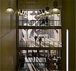 Académie de Harris, South Norwood, Londres. Architecte : John McAslan et partenaires