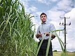 Farmer examining biomass fuel crop
