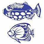 Tropical Fish. Set #5. Vector illustration on white background for design