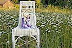 Daisy bouquet in purple sneakers on white wicker chair in daisy field.