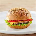 fresh hamburger on white plate