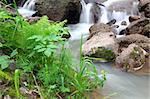 waterfall stream among rocks in summer woods