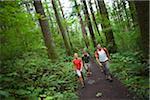 Four Friends Hiking, Columbia River Gorge, near Portland, Oregon, USA