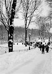 Sidewalk in Central Park