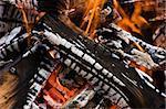 Closeup of burning camping bonfire