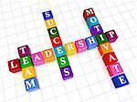 3d colour boxes crossword - leadership; team, motivate, success