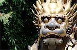 A bronze of a lion inside the forbidden city in beijing.