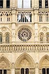 Notre Dame de Paris facade closeup vertical