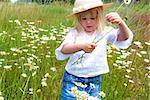 Little girl picking wild daisies.