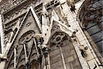 Notre Dame Cathedral gargoyles close-up, Paris, France
