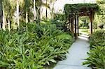 Tranquil  gazebo with plant around