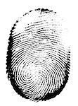 Printout of human fingerprint  with unique detail