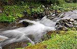 Small Carpathian stream, long exposure