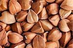 photo shot of buckwheat background