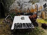 Beautiful abandoned rural scene consisting of rusty wheelbarrow and aluminium sheet
