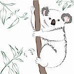 Vector illustration of cute gray koala bear