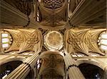 public cathedral of Salamanca city in Castilla Spain