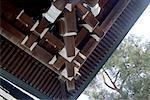 Japan, Tokyo, Meiji-Jingu temple