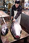 Japan, Tokyo, Tsukiji fishmarket, tunas