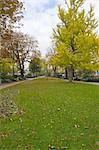 France, Paris, ile de la cité, park