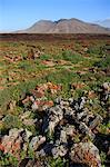 Montagnes de Malpais Espagne, Iles Canaries,