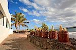 Espagne, Iles Canaries, Lanzarote, Arrieta