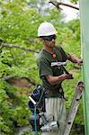 Hispanic carpenter hammering exterior sheathing on the upper floor of a house