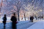 Tourists in a public park, Boston Common, Boston, Massachusetts, USA