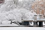 Snow covered trees with a footbridge in a public park, Boston Public Garden, Boston, Massachusetts, USA