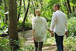 Couple walking in woods, rear view