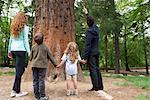Famille debout ensemble à la base du grand arbre, tenant par la main, vue arrière