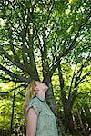 Jeune femme admirant les grands arbres