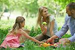 Famille ayant de pique-nique en plein air