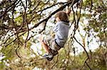 boy on rope swinging under tree