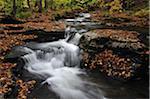 Wasserfälle im Wald, Pennsylvania, USA