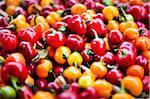 Bébé piments au marché de l'agriculteur biologique