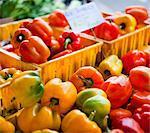 Poivrons au marché de l'agriculteur biologique