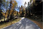 Road, Albula Pass, Canton of Graubunden, Switzerland