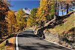 Road, col de l'Albula, Canton des Grisons, Suisse